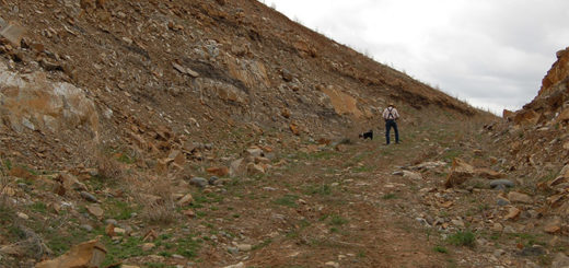 Jac Constant and his new puppy make their way up the mesa to show me the site of the proposed gravel pit.