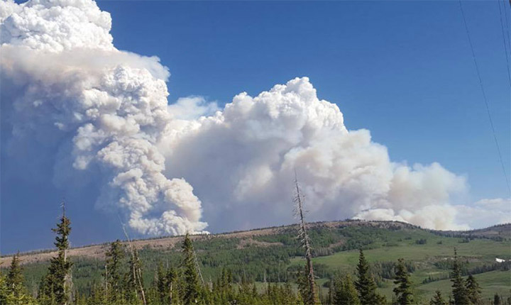 Brian Head Fire Grows